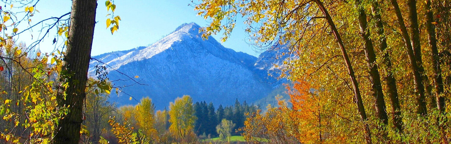 Fall colors with Wedge Mountain in the background